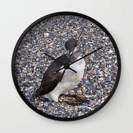 Razorbill Walking on the Beach Wall Clock
