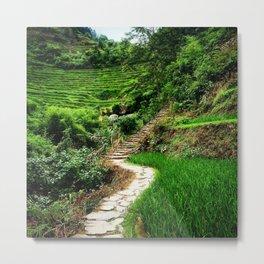 Path through the mountains Metal Print