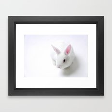 Out Of The Hat - Magic Rabbit  Framed Art Print