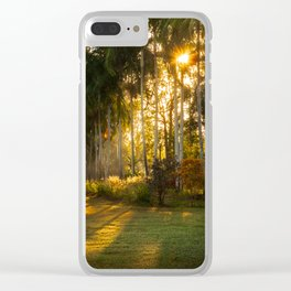 Sunburst at Litchfield National Park Clear iPhone Case