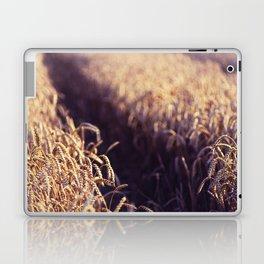 Golden Summer Field Laptop & iPad Skin