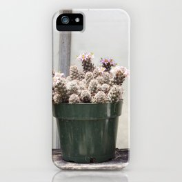 Three Little Cacti iPhone Case