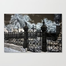 Infrared Gate  Canvas Print
