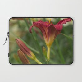 Bronze-Red Day Lily Laptop Sleeve