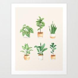 House Plants: Watercolor Edition Art Print