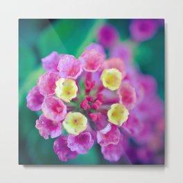 Verbena Flower Metal Print