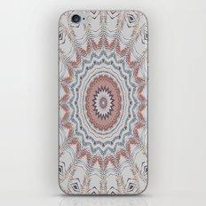 Dreamcatcher Earth iPhone & iPod Skin