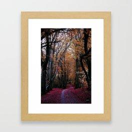 Path of Autumn Framed Art Print