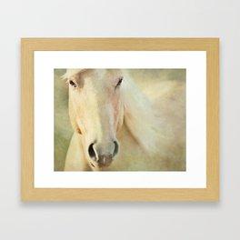 Horse Whisper Framed Art Print