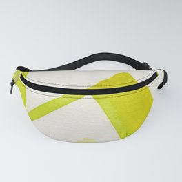 Green Angle Fanny Pack
