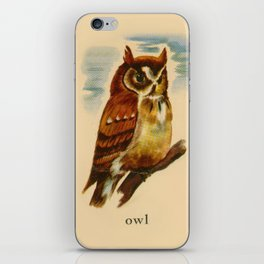 Owl Painting iPhone Skin