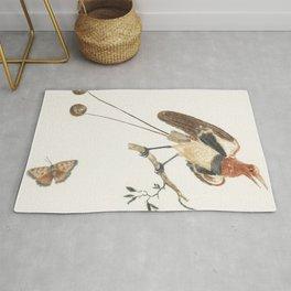 Bird of Paradise and a butterfly by Johan Teyler (1648-1709) Rug