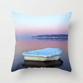 Ice Raft on the Sea Throw Pillow