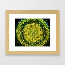 Suntastic I Framed Art Print