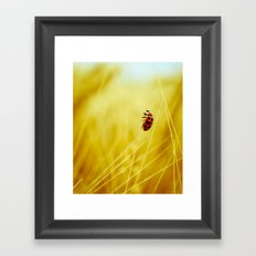 to the wind. Framed Art Print