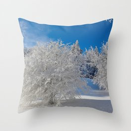 ice sculptures Throw Pillow