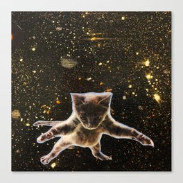 Kitten. In. Space. Canvas Print