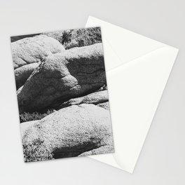 Big Rock 7444 Joshua Tree Stationery Cards