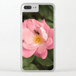 A rose and the fly insect Clear iPhone Case