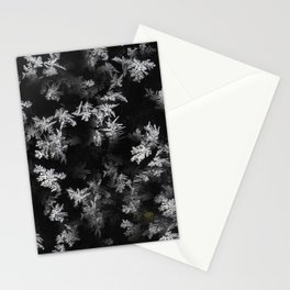 Ice Effect Stationery Cards