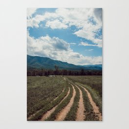 The fields of Tennessee Canvas Print