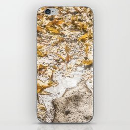 """Leaf Art 2"" by Murray Bolesta! iPhone Skin"