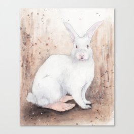 What If...?? Rabbits Had Feet. Canvas Print