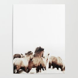 WILD AND FREE 2 - HORSES OF ICELAND Poster