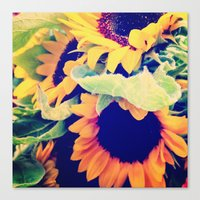 always sunny Canvas Prints featuring Always Sunny Sunflowers by LeeAnnPoling