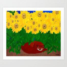 SUNFLOWERS SHADING A FOX Art Print
