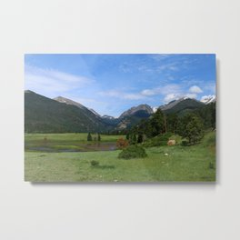 A Meadow In Rocky Mountain NP Metal Print