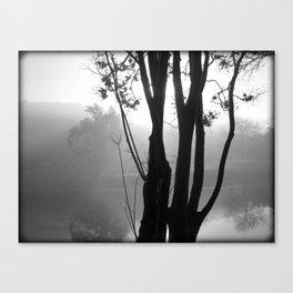 Fog on Texas Water Canvas Print