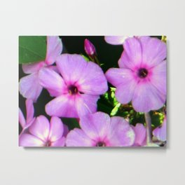 Gorgeous Pinkish Flowers Metal Print