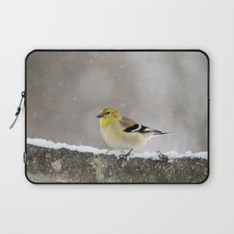 Winter Goldfinch Laptop Sleeve