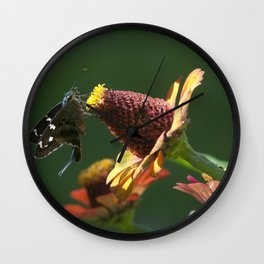Longtail Skipper Wall Clock