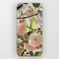 blush iPhone & iPod Skins featuring Blush by Bella Blue Photography