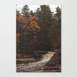 Tahquamenon Falls II Canvas Print
