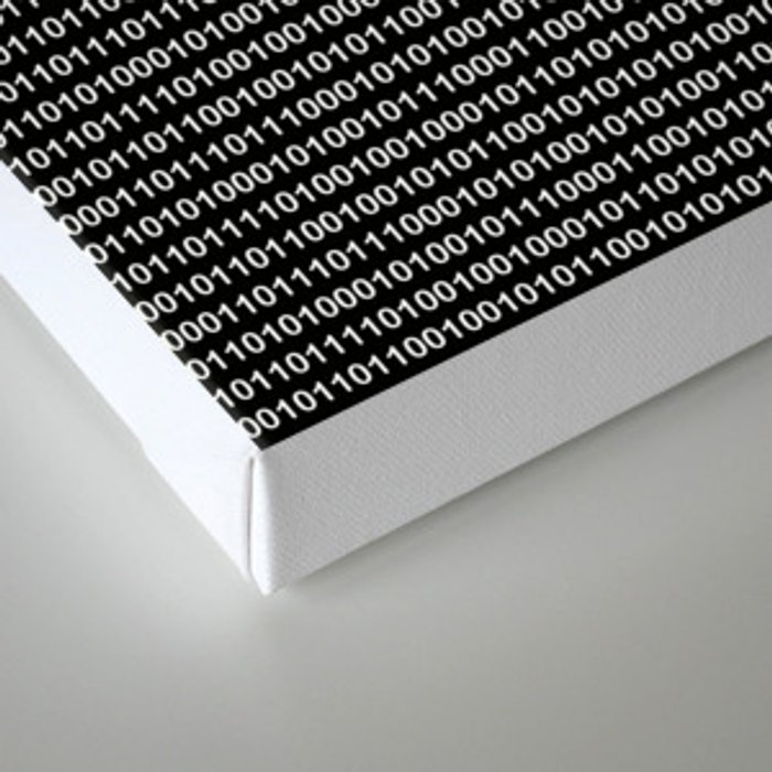 Binary Code in DOS Canvas Print