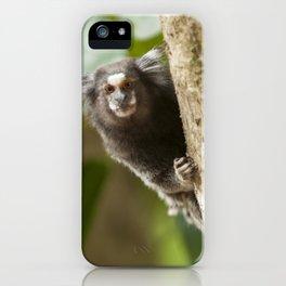 Little monkey iPhone Case