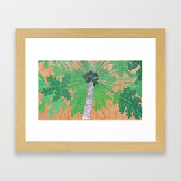 Papaya Tree Framed Art Print