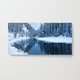 Fields of Winter Metal Print