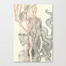 Torment Canvas Print