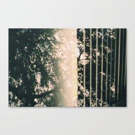 tree Talk Canvas Print