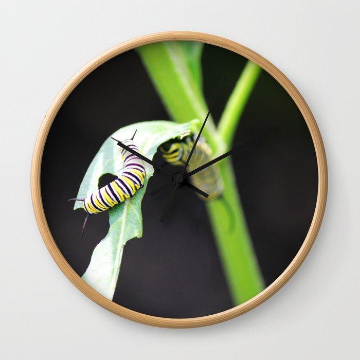 Monarch Caterpillar 1 Wall Clock