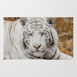 WHITE TIGER GAZE Rug