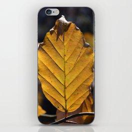 Yellow Leaf  iPhone Skin
