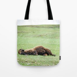 It's Been One of Those Days Tote Bag