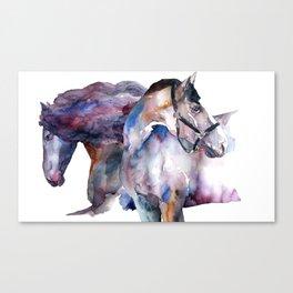 Horses #1 Canvas Print