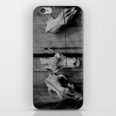 Skulls iPhone & iPod Skin