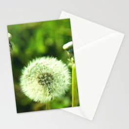 Blow me Stationery Cards